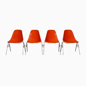 Fibreglass DSS Chairs by Charles & Ray Eames for Herman Miller, 1976, Set of 6