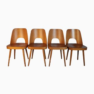 Model 515 Beech Chairs by Oswald Haerdtl for TON, 1950s, Set of 4