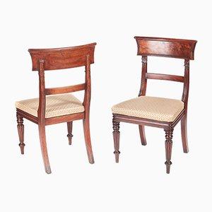 Antike William IV Schreibtischstühle aus Mahagoni, 2er Set