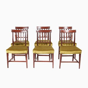 Georgian Mahogany Dining Chairs, Set of 6