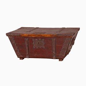 Antique Fir Trunk