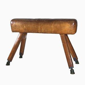 Vintage Sprungpferd von Francomario, 1960er