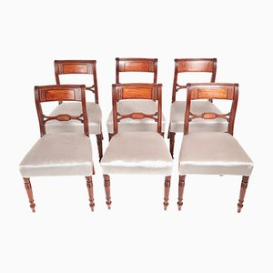 Antike Regency Esszimmerstühle aus Mahagoni & Messing mit Intarsien, 6er Set