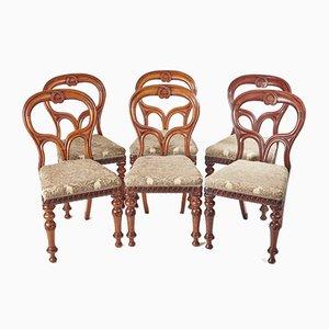 Schottische Esszimmerstühle aus Mahagoni, 1860er, 6er Set