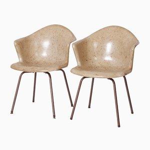 Chaises de Bureau Vintage de Douglas, 1950s, Set de 2