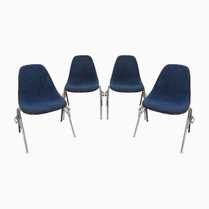 Chaises d'Appoint DSS Vintage par Charles & Ray Eames pour Vitra, 1950s, Set de 4