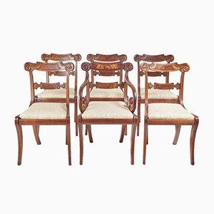 Regency Esszimmerstühle, 6er Set