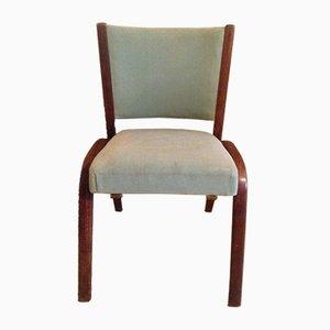 Stuhl aus Bugholz von Wilhelm von Bode für Steiner, 1950er
