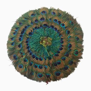 Vintage Peacock Feather Fan, 1950s