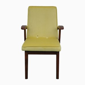 Modell 300-123 Sessel von Mieczysław Puchala für Bystrzycka Furniture Factory, 1960er