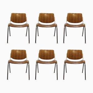 Moderne Mid-Century Nr. 106 Stühle von Giancarlo Piretti für Castelli, 1967, 6er Set