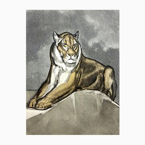 Tiger Engraving by Paul Jouve, 1950s