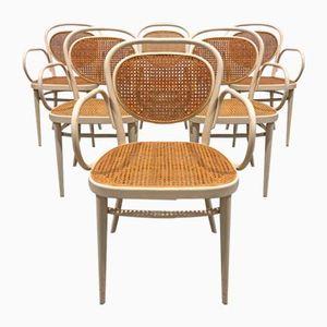 Butacas vintage de Thonet, 1965, Juego de 6