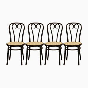 No. 16 Bentwood Chairs by Michael Thonet for ZPM Radomsko, 1970s, Set of 4