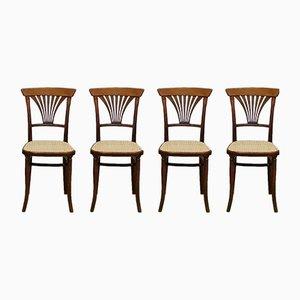 Antike Nr. 221 Stühle von Thonet, 1900er, 4er Set