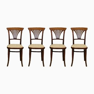 Chaises No. 221 Antique de Thonet, 1900s, Set de 4