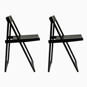Folding Chairs by Aldo Jacober for Bazzani, 1970s, Set of 2