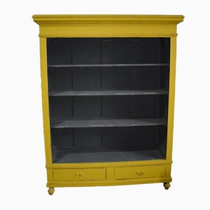 Vintage French Bookcase, 1920s