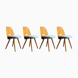 Chaises de Salon par František Jirák pour Tatra Nabytok, Tchéquie, 1960s, Set de 4