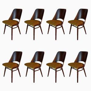 Tschechische Mid-Century Stühle aus Nussholz von Frantisek Jirak für TON, 1960er, 8er Set