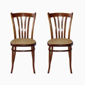 Antique Caned Bistro Chairs from Türpe, Set of 2