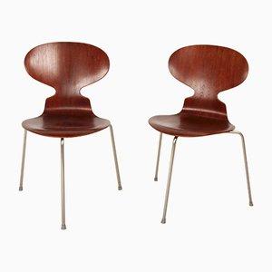 Dänische Mid-Century Modell 3100 Esszimmerstühle von Arne Jacobsen für Fritz Hansen, 1960er, 2er Set