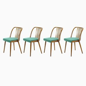 Czech Bentwood Chairs from Interier Praha, 1966, Set of 4