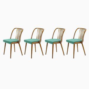 Tschechische Stühle aus Bugholz von Interier Praha, 1966, 4er Set
