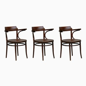 Bentwood Chairs with Backrest, 1920s, Set of 3