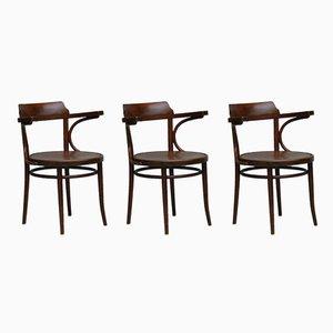 Bugholzstühle mit Rückenlehnen, 1920er, 3er Set