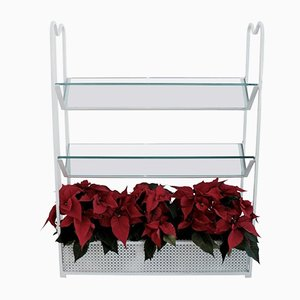 Glass Wall Mounted Planter Bookshelf by Mathieu Matégot, 1952