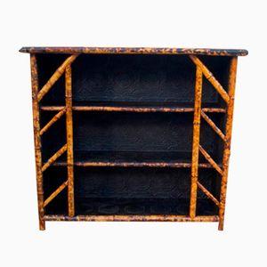 Librería victoriana antigua de bambú