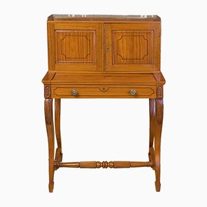 Antique Anglo-Indian Writing Cabinet