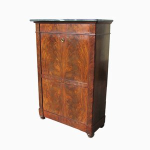 Mahogany Veneered Secretaire, 1830s