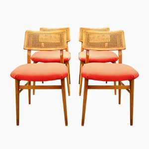 Vintage Rattan Chairs, 1950s, Set of 4