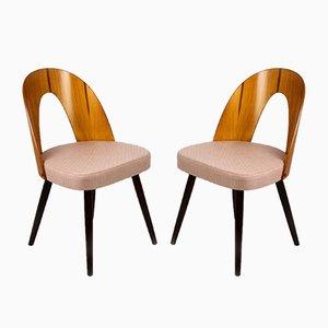 Esszimmerstühle von Antonín Šuman für Tatra, 1960er, 2er Set