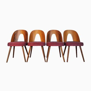 Mid-Century Czech Walnut Chairs by Antonín Šuman for Mier, Set of 4