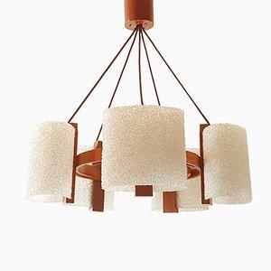 Lámpara de araña francesa Mid-Century de teca y resina, años 60