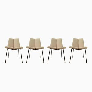 Faces Chairs by Pierre Guariche for Huchers Minvielle, 1955, Set of 4