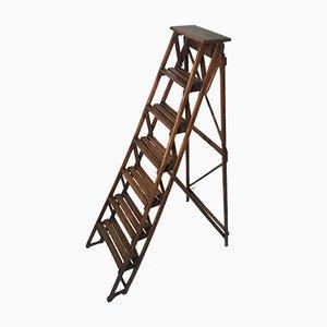 Vintage Decorative Wooden Ladder, 1930s