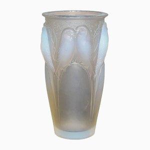 Vaso Ceylan in vetro smerigliato di René Lalique, anni '30