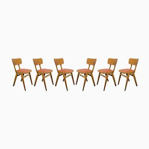 Café Dining Chairs from Centa, 1960s, Set of 6