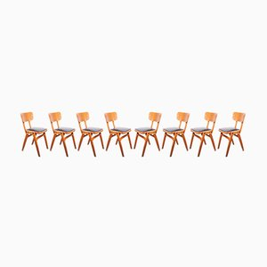 Café Dining Chairs with Black Seats from Centa, 1960s, Set of 8