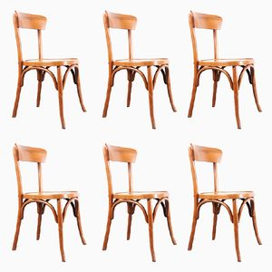 Bentwood Dining Chairs, 1950s, Set of 6