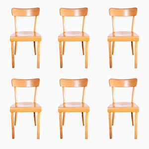Beechwood Dining Chairs, 1960s, Set of 6