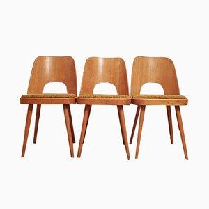 Sedie da pranzo di Oswald Haerdtl per TON, anni '50, set di 3