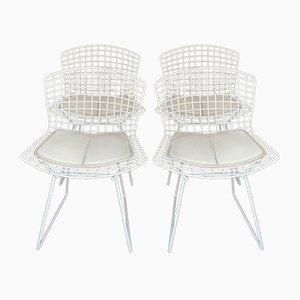 Weiße Vintage Stahlstühle von Harry Bertoia für Knoll International, 1970er, 4er Set