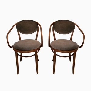 Vintage Model B9/209 Dining Chairs by Michael Thonet for ZPM Radomsko, 1960s, Set of 2