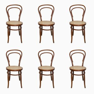 No. 14 Dining Chairs by Michael Thonet for Josef Hofmann, 1900s, Set of 6