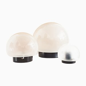 Sandblasted Glass & Black Metal Ceiling Lamps by Elio Martinelli for Martinelli Luce, 1960s